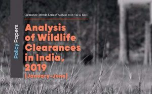 Read more about the article Analysis of Wildlife Clearances in India , 2019 (Jan- June)