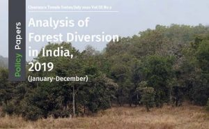 Read more about the article Analysis of Forest Diversion 2019
