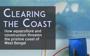Read more about the article Clearing the Coast